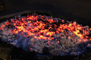 Sandoz-Corporate-Firewalk-3